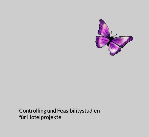 Controlling für Hotelprojekte