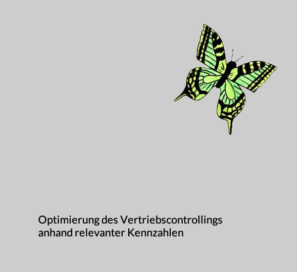 Optimierung Vertriebscontrolling
